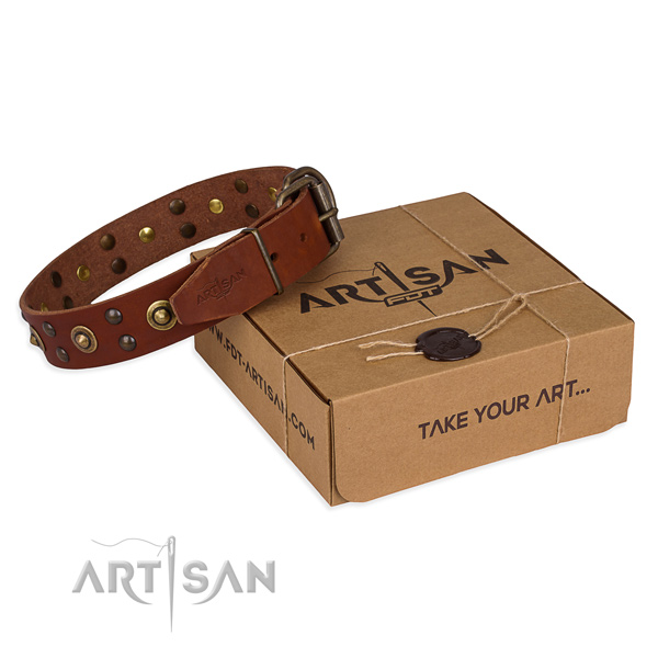 Reliable buckle on genuine leather collar for your impressive canine