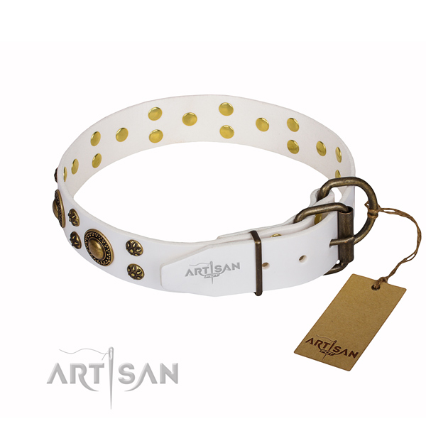 Daily use decorated dog collar of high quality full grain natural leather