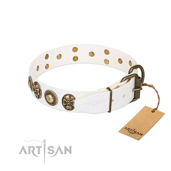 Strong studs on everyday walking dog collar