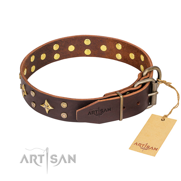 Walking decorated dog collar of high quality leather