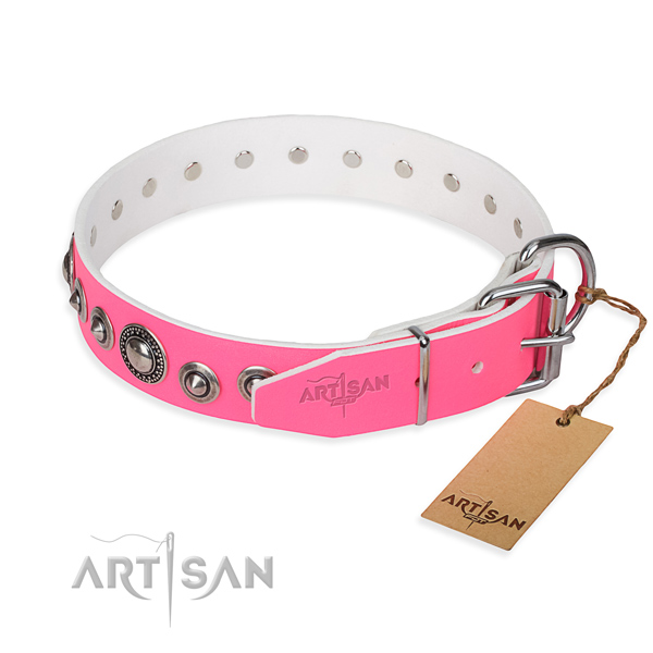 Full grain leather dog collar made of reliable material with rust-proof studs
