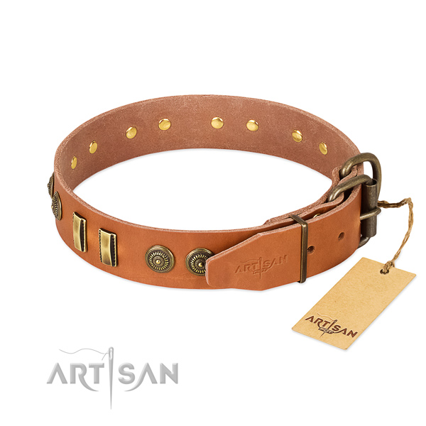 Corrosion proof traditional buckle on genuine leather dog collar for your dog