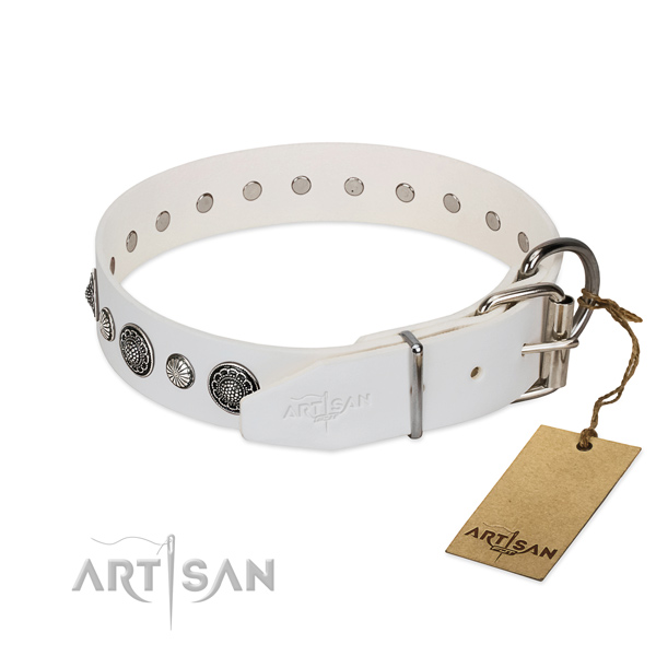 Quality full grain genuine leather dog collar with corrosion resistant fittings