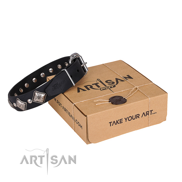 Daily walking dog collar of reliable natural leather with embellishments