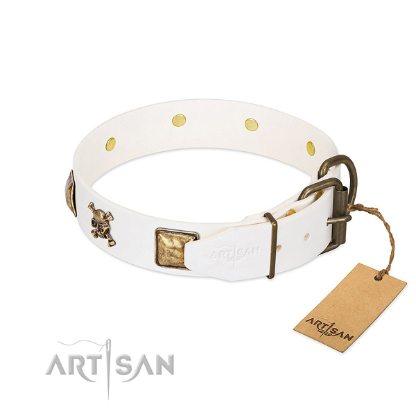 Everyday use leather dog collar with incredible decorations