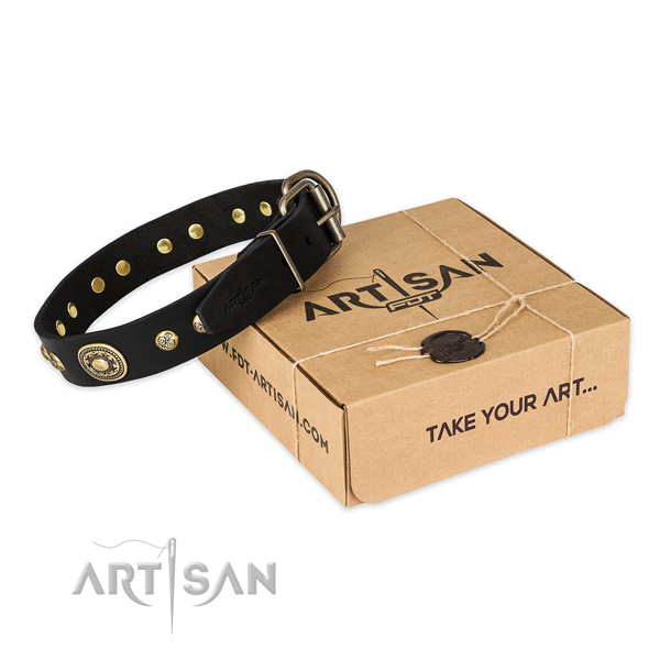 Durable traditional buckle on genuine leather dog collar for easy wearing