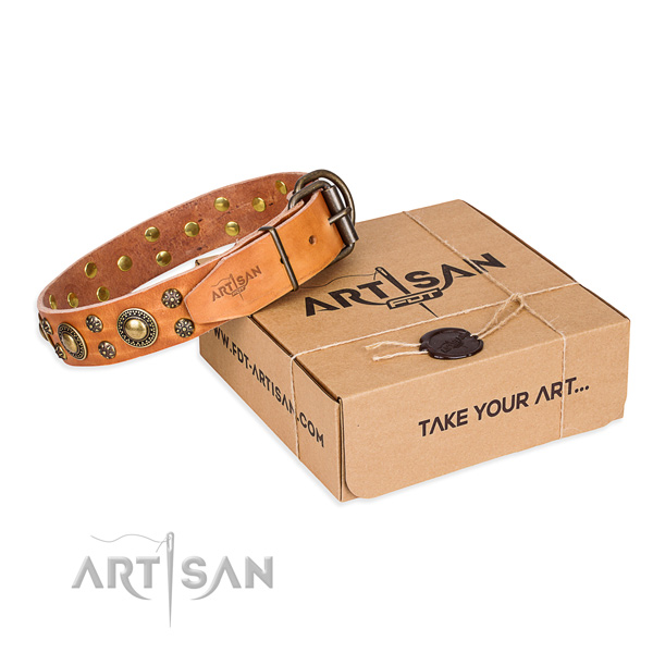 Easy wearing dog collar of best quality natural leather with embellishments