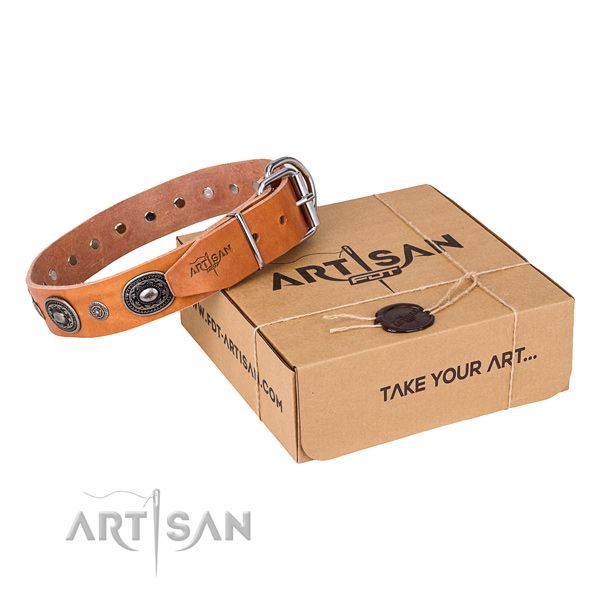 Quality full grain leather dog collar crafted for walking