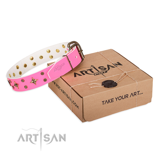 Everyday use dog collar of quality full grain natural leather with studs