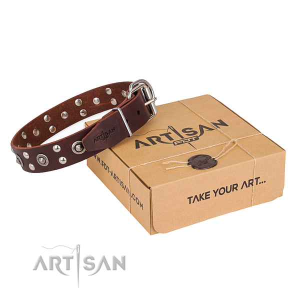 Handy use dog collar with Extraordinary rust resistant decorations