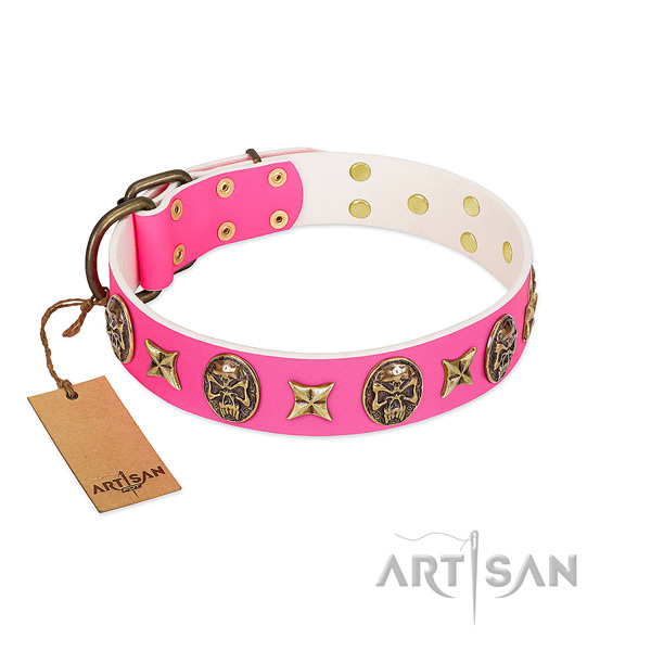 Full grain natural leather dog collar with reliable studs