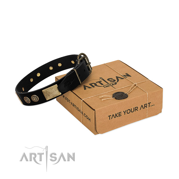Strong adornments on full grain natural leather dog collar for your canine