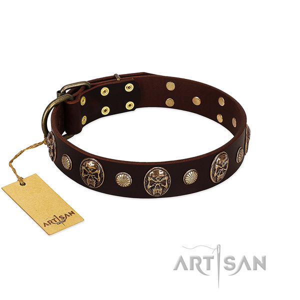 Exquisite full grain natural leather dog collar for stylish walking