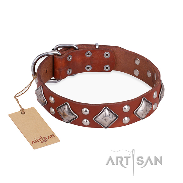 Walking handcrafted dog collar with corrosion proof D-ring