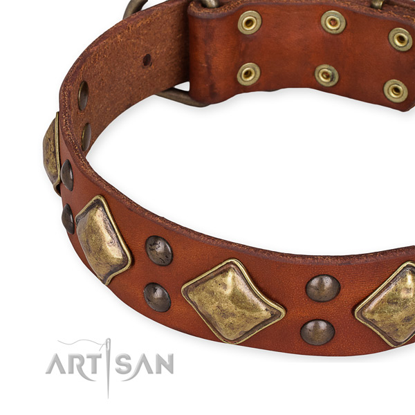 Full grain natural leather collar with rust resistant hardware for your attractive canine