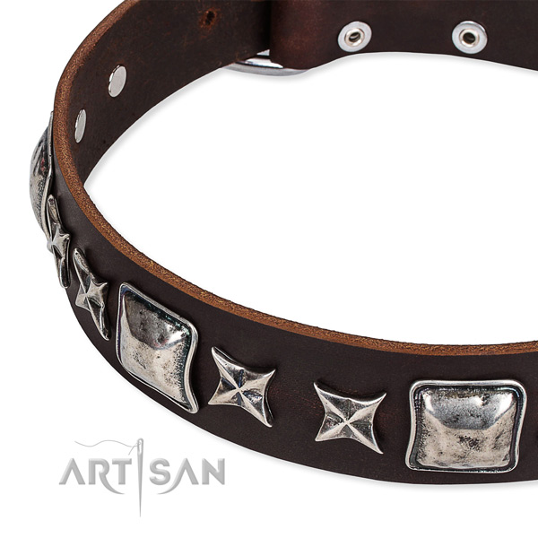 Basic training decorated dog collar of best quality full grain leather