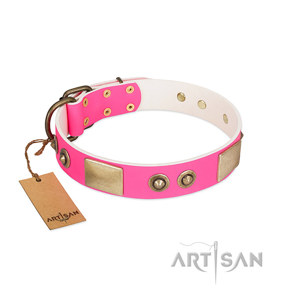 Rust-proof embellishments on full grain genuine leather dog collar for your doggie