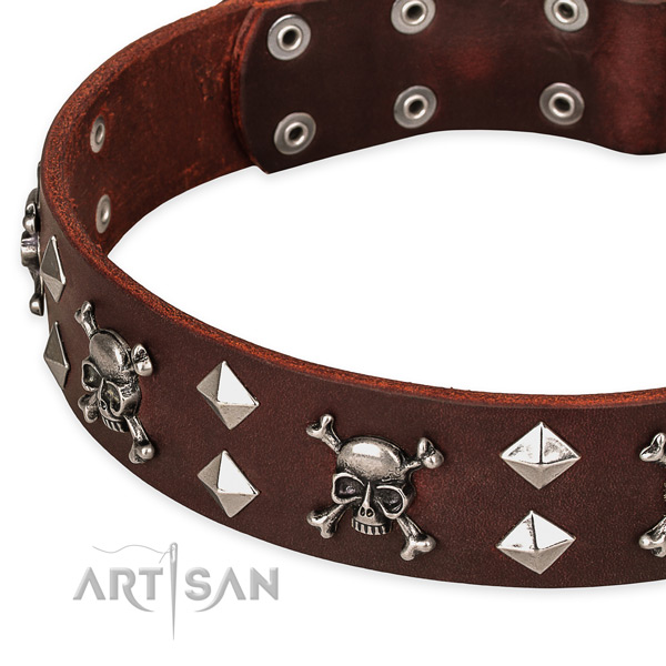 Basic training embellished dog collar of fine quality leather