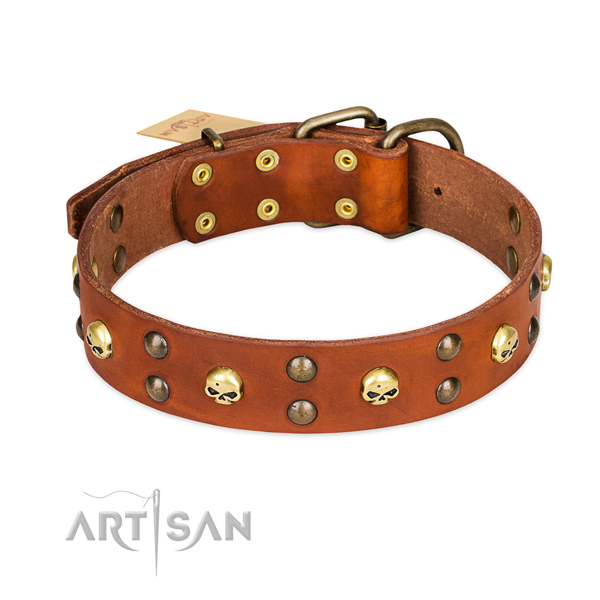 Daily use dog collar of high quality full grain genuine leather with embellishments