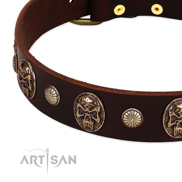 Full grain leather dog collar with studs for everyday use
