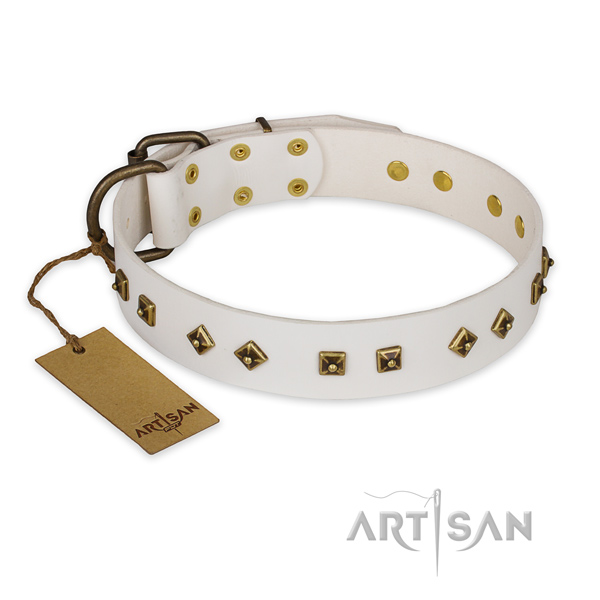 Exceptional leather dog collar with reliable traditional buckle