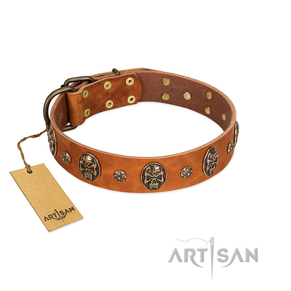 Easy wearing full grain leather collar for your dog