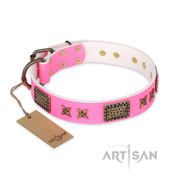 Significant leather dog collar with durable hardware