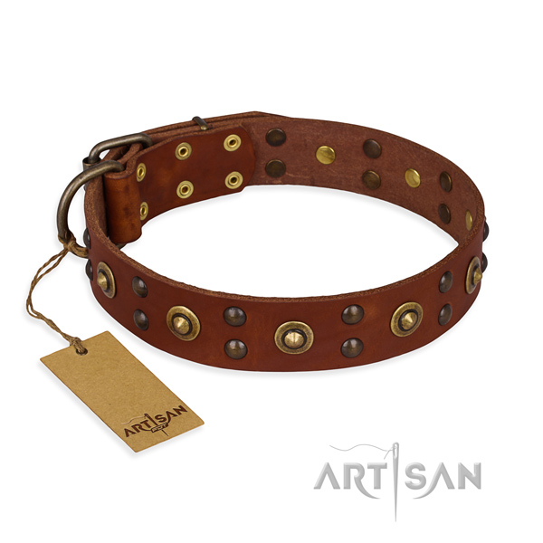 Studded full grain genuine leather dog collar with durable D-ring