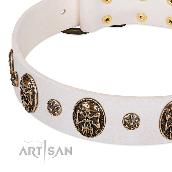Rust resistant traditional buckle on natural genuine leather dog collar for your doggie
