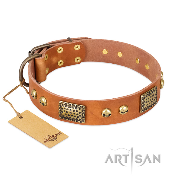 Easy to adjust full grain genuine leather dog collar for stylish walking your four-legged friend