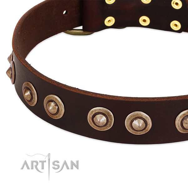 Durable hardware on genuine leather dog collar for your four-legged friend