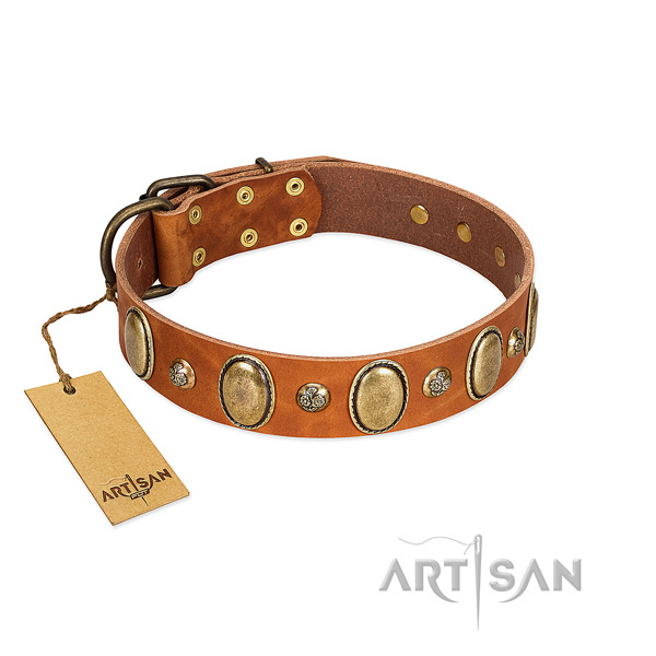 Genuine leather dog collar of quality material with top notch studs
