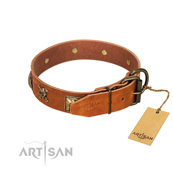 Remarkable full grain leather dog collar with corrosion proof embellishments