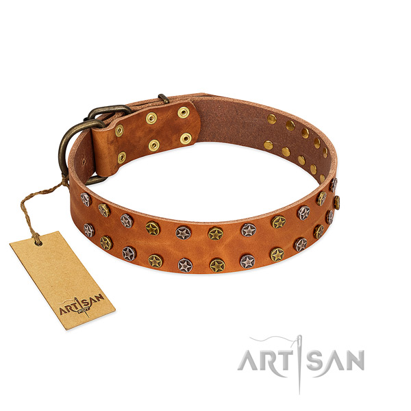 Everyday walking soft to touch full grain genuine leather dog collar with embellishments