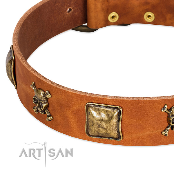 Stylish design full grain genuine leather dog collar with rust-proof studs