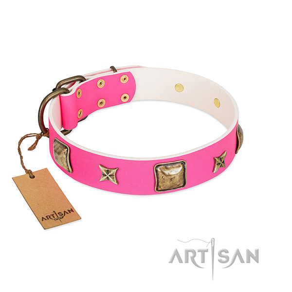 Natural leather dog collar of soft material with incredible adornments