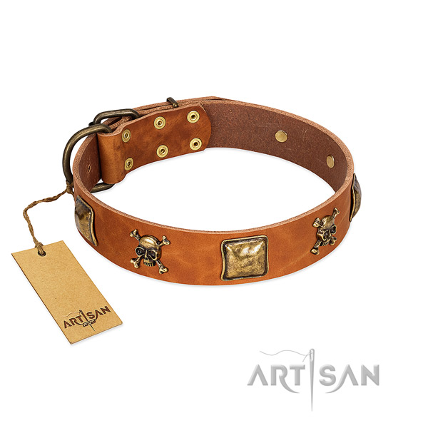 Unique full grain natural leather dog collar with reliable decorations