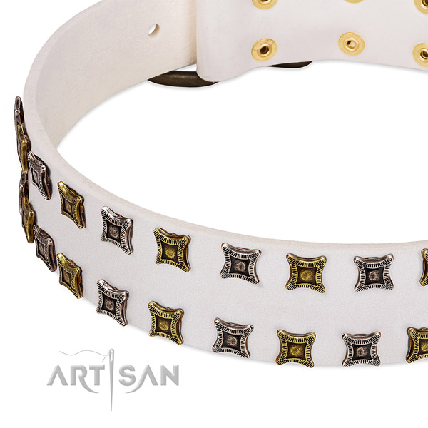 Leather dog collar with decorations for your lovely four-legged friend