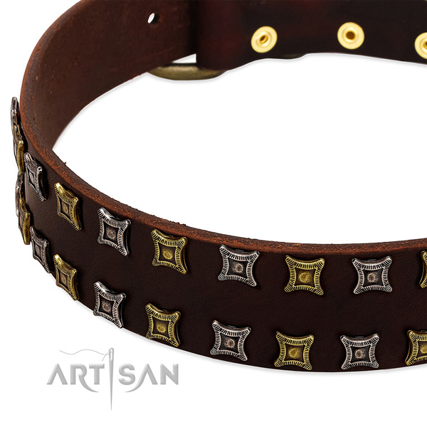 Best quality natural leather dog collar for your attractive dog