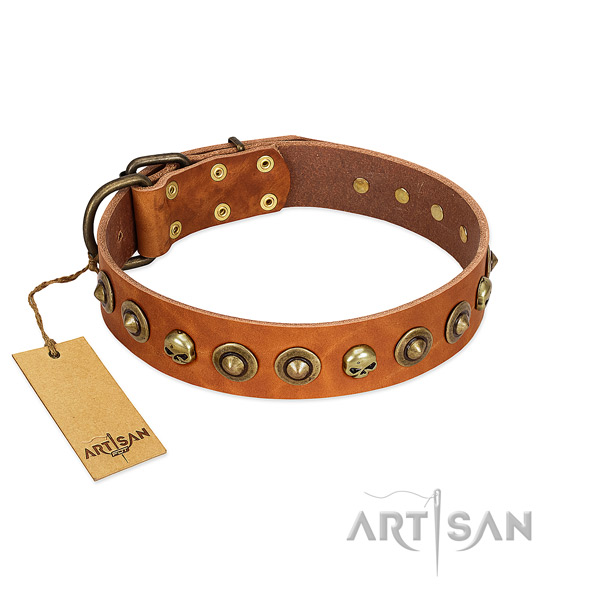 Full grain natural leather collar with impressive adornments for your doggie