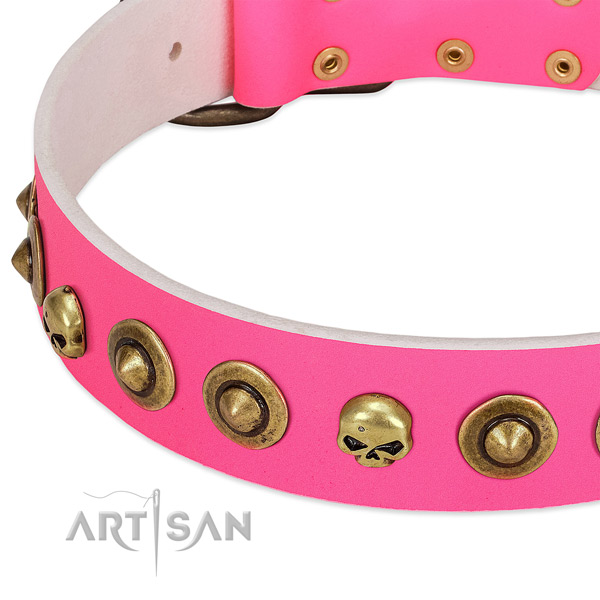 Amazing decorations on full grain leather collar for your doggie