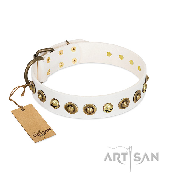 Genuine leather collar with top notch studs for your canine