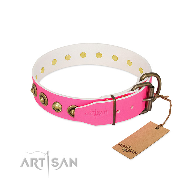 Natural leather collar with designer decorations for your four-legged friend