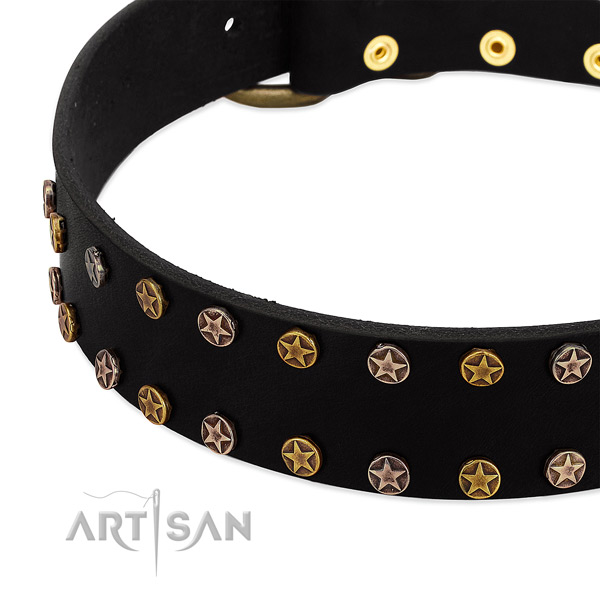 Incredible adornments on genuine leather collar for your canine