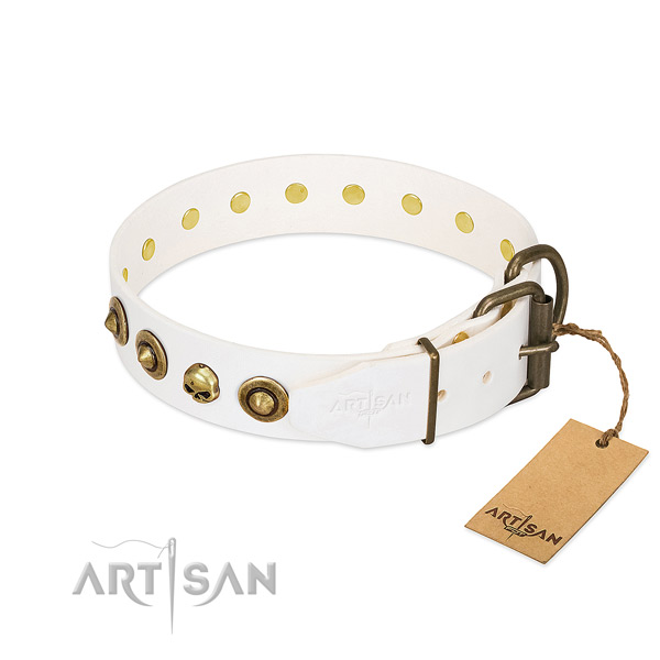 Full grain leather collar with unique embellishments for your pet