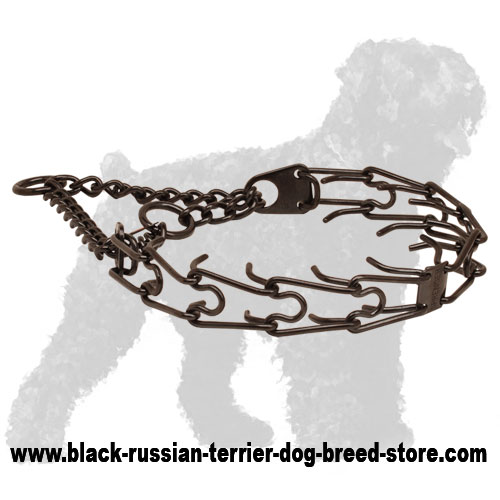 Prong collar of corrosion-proof black stainless steel for ill behaved canines