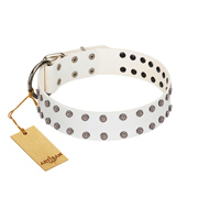 """White Night"" FDT Artisan White Leather Black Russian Terrier Collar with Vinatge Silver-like Studs"