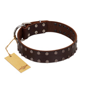 """Star Party"" Handmade FDT Artisan Brown Leather Black Russian Terrier Collar with Silver-Like Studs"