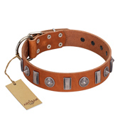 """Luxurious Necklace"" FDT Artisan Tan Leather Black Russian Terrier Collar with Silver-Like Adornments"