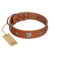 """Lucky Star"" FDT Artisan Tan Leather Black Russian Terrier Collar with Silver-Like Embellishments"